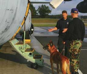 In every job, there is an on-the-job training program. (Police K-9 Magazine Image)