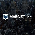 Magnet IEF: Find, Analyze, & Report on Potential Digital Forensic Evidence