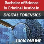 Online CJ Degree - Digital Forensics