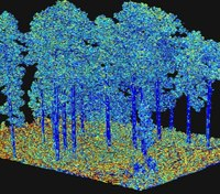 New 3D tool assists firefighters in predicting fire behavior