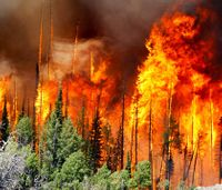 Man charged in igniting massive Utah wildfire