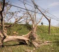 Firefighter hazard: Downed power lines