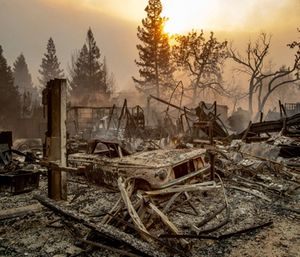 Sheriff's officials in Northern California say the five people found dead in vehicles torched by a wildfire's flames could not immediately be identified because of the burns they suffered. (Photo/AP)