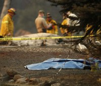 Officials: 31 dead in Calif. wildfires, responders searching for more victims