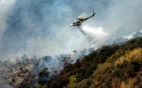 Brush fire on Los Angeles hillside sparked by weed whacker