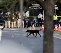 Chief: Austin likely facing 'serial bomber'