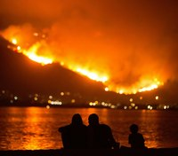 National Interagency Fire Center calls for busy wildfire season on West Coast
