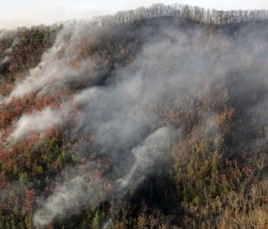 The review by ABS Consulting, conducted for about $100,000, examined the response by Gatlinburg and Sevier County agencies to the Nov. 28, 2016, wildfire. (Photo/AP)