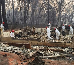 In this Nov. 15, 2018 file photo, volunteer rescue workers search for human remains in the rubble of homes burned in the Camp Fire in Paradise, Calif. A northern California sheriff's office has released the names of two more people who died in a devastating wildfire that killed at least 86 people. The Butte County Sheriff's office identified on Thursday, Jan. 31, 2019, the deceased as 74-year-old Robert Quinn of Paradise and 93-year-old Berniece Schmidt of Magalia. (AP Photo/Terry Chea, File)