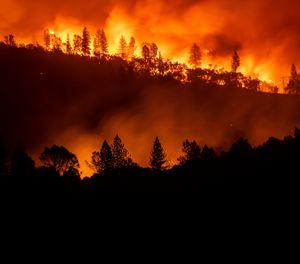 In this Nov. 10, 2018, file photo, the Camp Fire burns along a ridge top near Big Bend, Calif. California fire officials want to dramatically increase the removal of dead trees and other forest management practices to reduce fuel for wildfires and are calling on the National Guard to help with the effort. (AP Photo/Noah Berger, File)