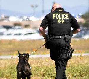 In preparingto become a K-9 handler, you need to determine what makes you the best candidate for the job. (Photo/PoliceOne)