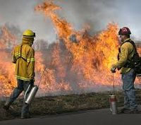 Should stricter standards be in place for wildfire disaster funds?