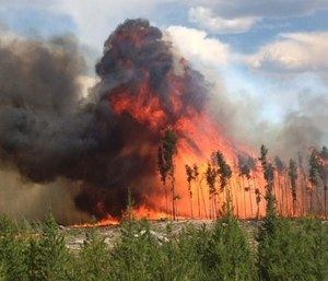 At the peak of the Golf Course Fire, more than 25 different agencies were assisting with the incident, from other fire and emergency services agencies, to the Red Cross and local businesses. (Photo/Grand Lake Fire Protection District)