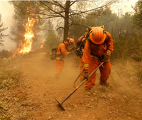 Calif. may allow inmate firefighters with violent pasts