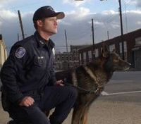 Lessons from a military K-9 trainer