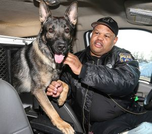 Police Officer Alvin Outlaw and his K-9 partner, Thor, Outlaw and Thor have gained notoriety with Thor's beloved Twitter persona and their good deeds in the community Friday, February 14, 2014. (Steven M. Falk/Philadelphia Daily News/TNS)