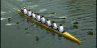 5 notable traits of high-performing management teams