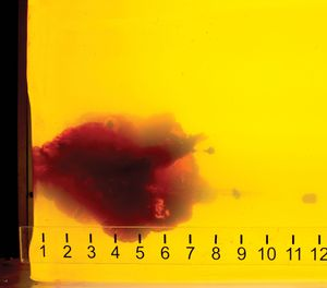 The Hornady TAP Entry load fragments in ballistic gelatin, producing an explosive temporary wound channel, while still meeting the FBI's minimum of 12 inches of penetration. (Photo credit/Hornady Manufacturing)