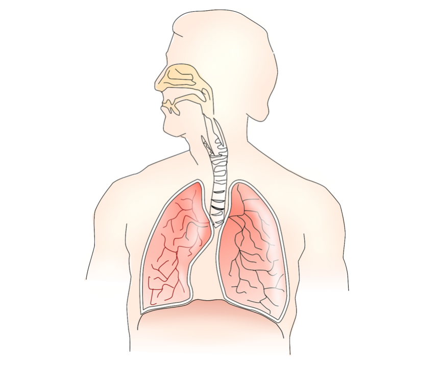 4 things EMS providers need to know about hyperventilation syndrome