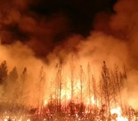 Training, accountability: 3 lessons from the Griffith Park fire