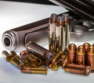 A Broward County judge on Friday, March 16, 2018, issued what is thought to be the state's first order temporarily removing guns from a person under Florida's new gun-control laws. (Richard McMillin/Dreamstime/TNS)