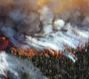 Prepare your community by creating defensible spaces, understanding managed burns and discouraging building at low levels. (Courtesy Mike Lewelling, NPS/www.doi.gov)
