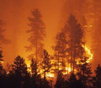 California's massive wildfires present unique challenges for firefighters