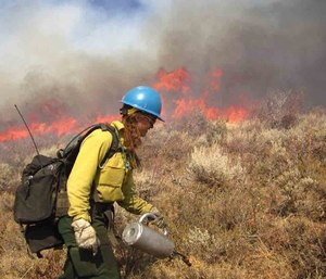 Wildland fire contracts are awarded at the local, regional, state and federal levels. (Photo/www.fs.usda.gov)
