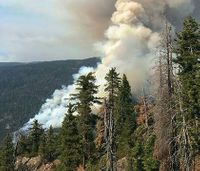 New partnership aims to protect Calif. wildlife, reduce fire risk