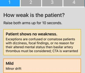"""The app utilizes """"stroke scales"""" that measure certain physical indicators. (Photo/Stroke Scales)"""