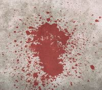 What cops should know about processing void blood patterns