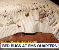 Bed bugs close Detroit EMS stations