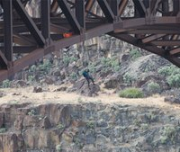 Medic describes intense high angle rescue from Idaho bridge