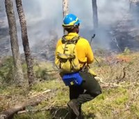 RI reducing wildfire risk by burning overgrown forests