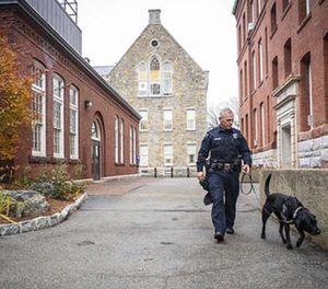 In this Nov. 29, 2016 photo, Bella, a Worcester Polytechnic Institute police department explosives detection dog is walked on campus by handler officer Brian Lavelle in Worcester, Mass. (Steven King/Worcester Polytechnic Institute via AP)