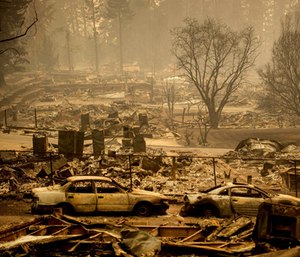 More than a dozen coroner search and recovery teams looked for human remains from a Northern California wildfire that killed at least 42. (Photo/AP)