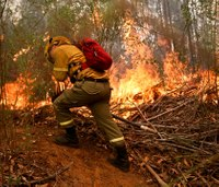 Over 4K firefighters battling fast-spreading Chile wildfires