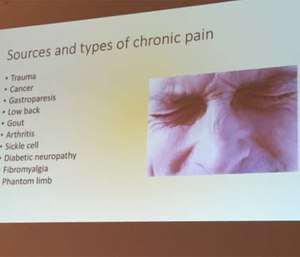 Perceptions of pain are influenced by the other types of stressors in patient's lives and a physiological problem has social consequences in how the patient is perceived or treated by family, friends and co-workers. (Photo by Greg Friese)