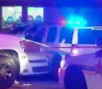 Fugitive shot by Fla. cops after ramming squad, pinning deputy
