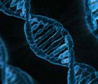 Researchers explore PTSD, genetics link