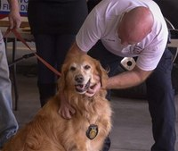 Video: Dog saves family from fire, made honorary firefighter