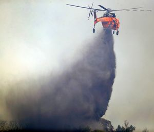 Santa Rosa city fire investigators have determined that PG&E power lines buffeted by heavy winds the night of Oct. 8 ignited at least two small fires. (Photo/AP)