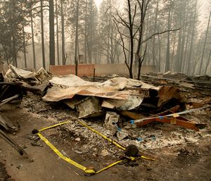 The Camp Fire death toll climbed to 81 Tuesday after the remains of two more people were found, authorities said. (Photo/AP)