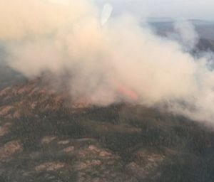 More than 260 fire personnel are currently assigned to the North Fire, which stood at 1,120 acres and 85 percent containment. (Photo/US Forest Service)