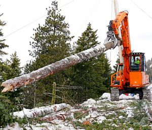 A log yarder moves a log into position above a slope where a crew is thinning a 100-acre patch on private land owned by the Nature Conservancy. (AP Photo/Elaine Thompson)