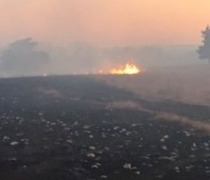 """A """"fast attack"""" rig was consumed by a rural grass fire that burned around 200 acres. (Photo/KSFFA)"""