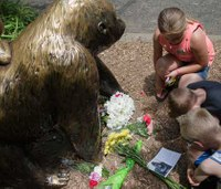 Incident Review: Firefighters, medics rescue toddler at the Cincinnati Zoo