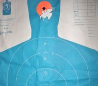 Firearms training and prevention of hearing loss