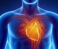 Study: Cardiac survival rate higher for men than women