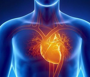 A recent study suggests that while improvements have been made in the out-of-hospital cardiac arrest care, survival rates are higher for men than they are for women. (Photo/Nutrition Review)